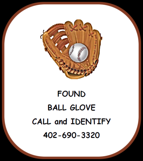FOUND BALL GLOVE 1