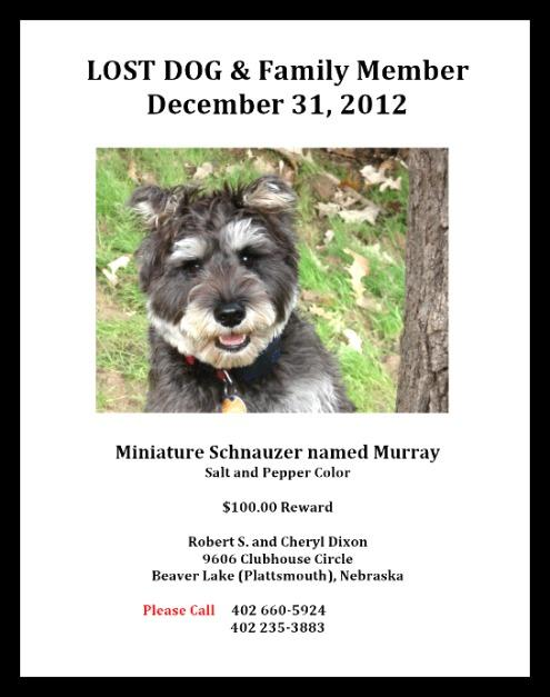 2013-01-02 LOST_DOG_Murray